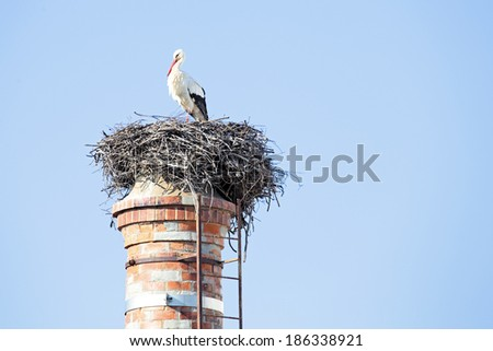 Nest with a stork on top of an abandoned factory chimney. - stock photo