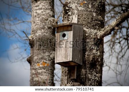 Nesting box on a tree - stock photo