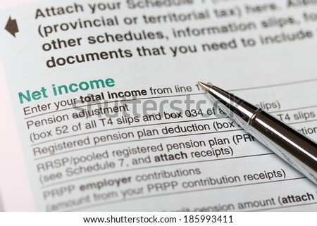 Net income form - stock photo
