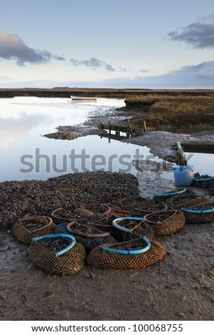 Nets full of mussels waiting to be collected - stock photo