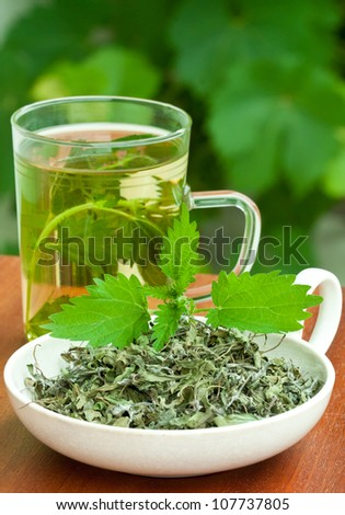 Nettle and freshly made nettle tea in glass cup.