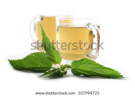 Nettle and freshly made nettle tea in glass cups isolated on white background. Shallow dof, focus on nettle - stock photo