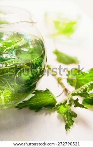 nettle tea in glass teapot and fresh leaves , close up - stock photo
