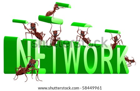 network building internet or social web construction 3D word created by ants - stock photo