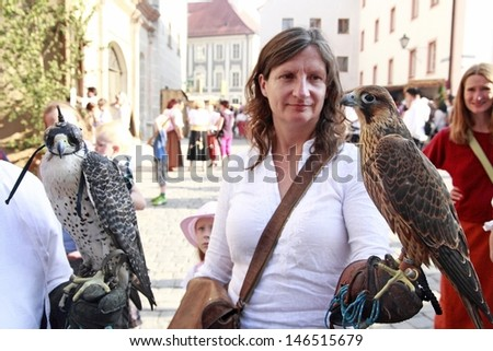 NEUBURG AN DER DONAU - JUNE 30: falcons at the festival on June 30, 2013 in Neuburg, Germany. This is annually folk festival in renaissance city Neuburg in Bavaria, Germany - stock photo