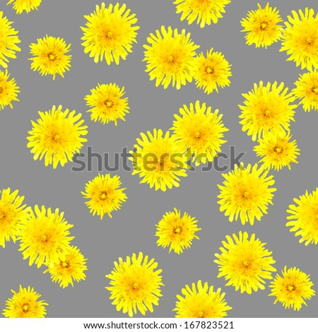 Neutral seamless backdrop with bright flowers yellow dandelions - stock photo