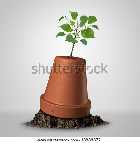 Never give up hope concept of persistence and the unstoppable force of nature as a sapling plant emerging out of an upside down flower pot as a success metaphor and motivation symbol. - stock photo