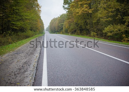 new asphalt. repaired road. road through the autumn forest
