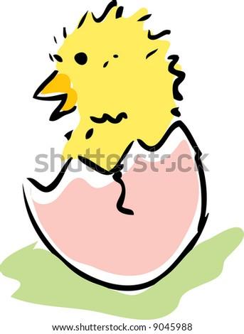 New baby chick emerging from broken egg illustration - stock photo