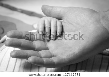 New born baby hand held by father - stock photo