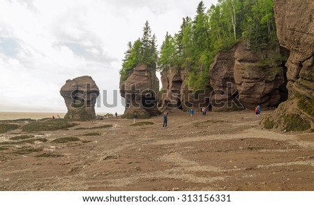 NEW BRUNSWICK, CANADA-JUN 10, 2015: Tourists exploring and photographing  sea floor of Bay of Fundy at low tide in Hopewell Rocks Park in New Brunswick Canada.