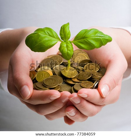 New business perspective - seedling in coins - stock photo