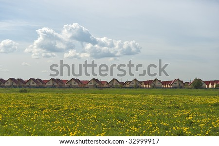 New cottages quarter and field of yellow dandelions