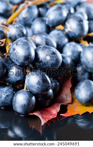 New crop of grapes ,focus on foreground - stock photo
