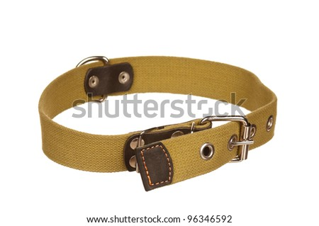 New dog collar isolated on the white background - stock photo