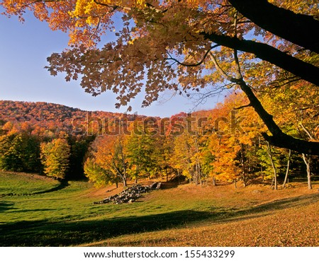 New England Autumn Morning - stock photo