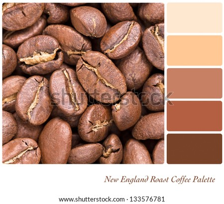New England Roast coffee bean colour palette with complimentary swatches. Part of a series of five images showing grades of roasted coffee. - stock photo