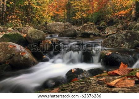 New Hampshire autumn stream in the white mountains area. - stock photo