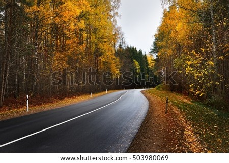 New highway road in an colorful Autumn forest in Riga, Latvia, the Baltic states.