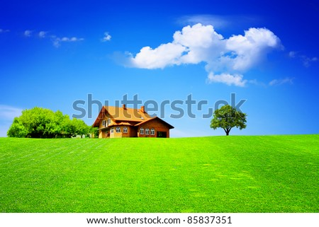 New house on green field - stock photo