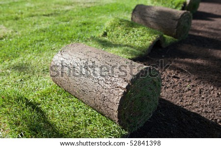 new lawn being spread - stock photo