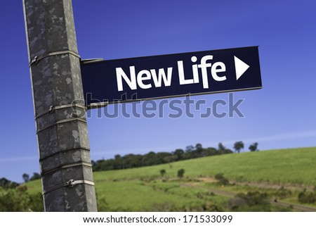 New Life creative sign on a green area - stock photo