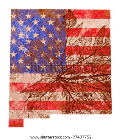 New Mexico state of the United States of America in grunge flag pattern isolated on white background - stock photo