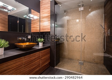 New Modern Bathroom Fancy Shower On Stock Photo (Royalty Free ...