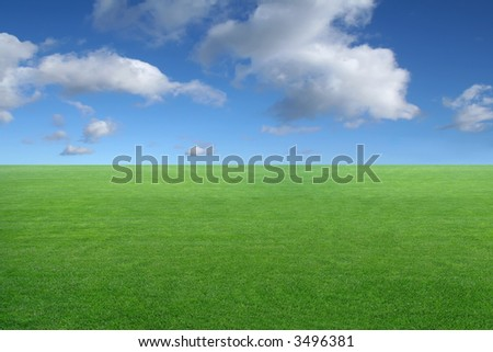 new peaceful desktop wallpaper - green grass on blue sky background