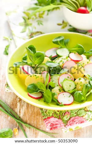 New potato salad with radishes and cucumbers - stock photo