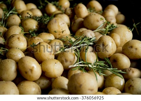 New potatoes waiting to be roasted with rosmary - stock photo