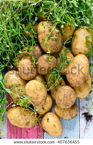 New Potatoes with thyme - stock photo