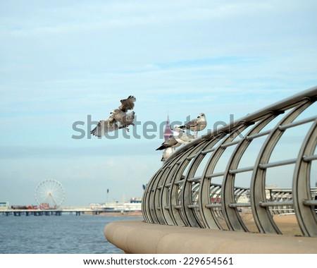New promenade at Blackpool - stock photo
