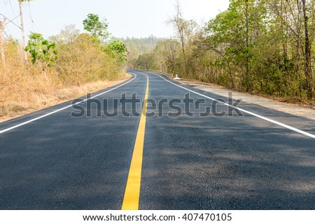 new road in forest