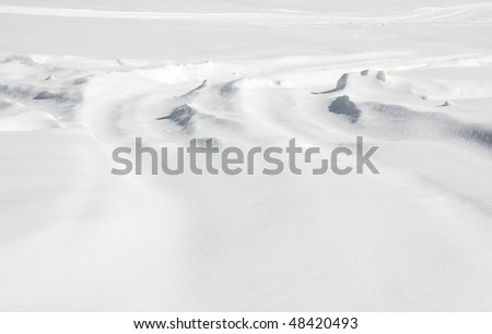 New Snow Fall - Snow Ground
