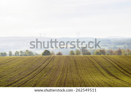 New sown fields in the countryside - stock photo