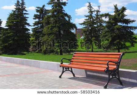 new wooden bench in a city park