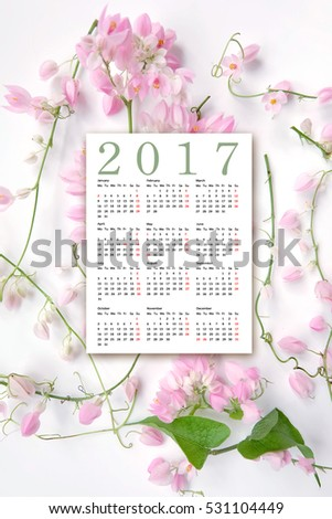 New year 2017, Calendar for the year 2017
