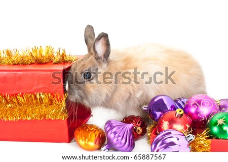 New-year decorations. Young rabbit, red giftbox and  many varicoloured ball composition on a white background - stock photo
