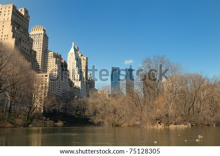New York Central Park by a freezing cold. - stock photo
