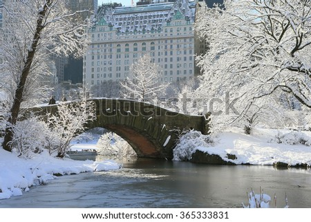 New York Central Park in Snow