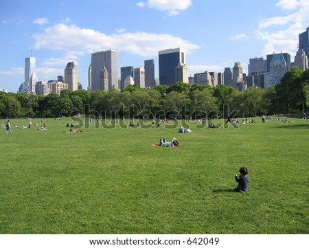 New York Central Park View