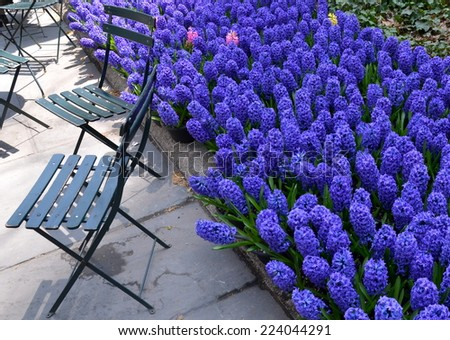 NEW YORK CITY - APRIL 22, 2014: Bryant Park in the spring, New York City, USA. - stock photo