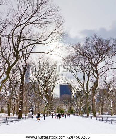 NEW YORK CITY - JANUARY 2015: Crowds of people enjoy the recent snowfall in Central Park after a big winter blizzard hits downtown Manhattan, New York City. - stock photo