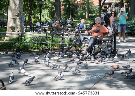 NEW YORK - JUNE 22, 2016: pigeon man in Washington Square Park - guy with pigeons all over him - bench with birds on summer day in New York City. WSP is one of the city's 1,900 public parks.