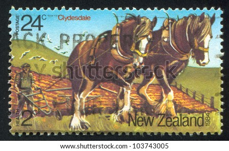 NEW ZEALAND - CIRCA 1984: A stamp printed by New Zealand, shows Horses, Clydesdales, circa 1984