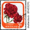NEW ZEALAND - CIRCA 1975: A stamp printed in New Zealand shows rose Lilli Marlene, series, circa 1975 - stock photo