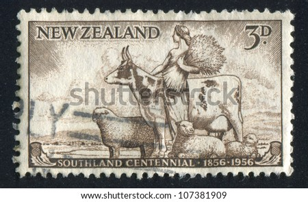 NEW ZEALAND - CIRCA 1956: stamp printed by New Zealand, shows Agriculture with Cow and Sheep, circa 1956