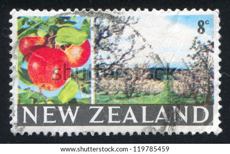 NEW ZEALAND - CIRCA 1968: stamp printed by New Zealand, shows apple, orchard, circa 1968 - stock photo