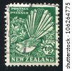 NEW ZEALAND - CIRCA 1935: stamp printed by New Zealand, shows Pied Fantail and Clematis, circa 1935 - stock photo